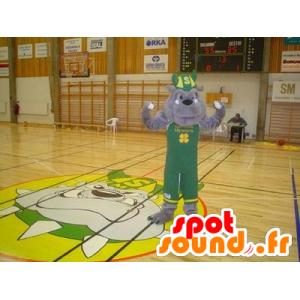 Bulldog mascot gray green outfit with a Viking helmet