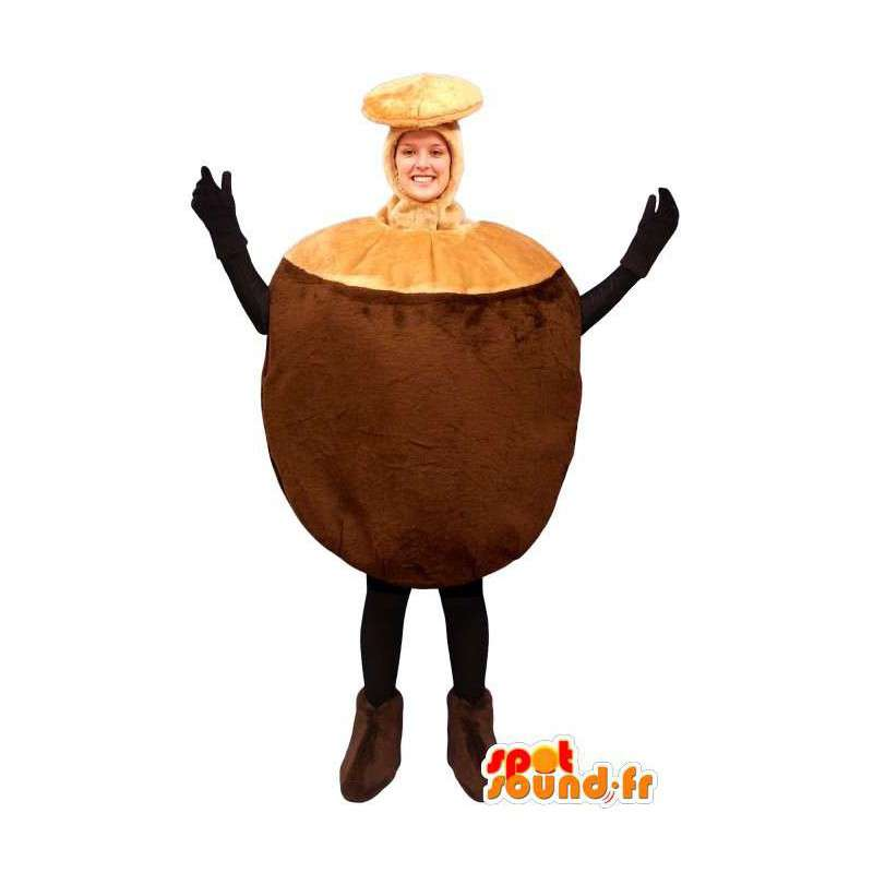Mascot nuts giant coconut - Buy our Fruit mascot