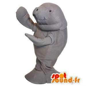 Mascotte de morse gris. Costume d'otarie