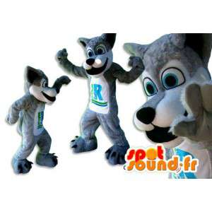 Cinzenta e branca mascote lobo. Costume lobo cinzento