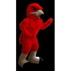 Maskotka czerwony orzeł, bardzo muskularny - MASFR20420 - ptaki Mascot