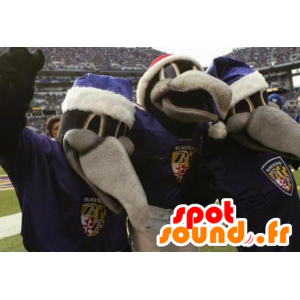 3 mascots gray and black crows - MASFR20578 - Mascot of birds