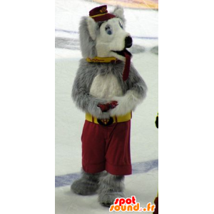 Koira maskotti susi, harmaa ja valkoinen