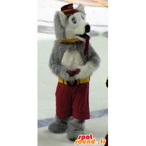 Pies maskotka wilk, szary i biały