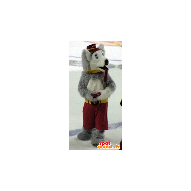 Hundemaskot, ulv, grå og hvid - Spotsound maskot kostume
