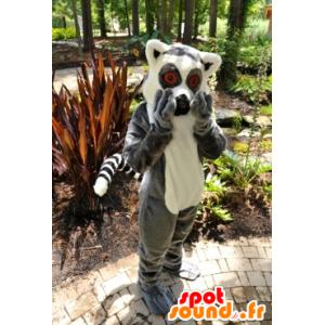Mascote lemur, macaco pequeno cinza e branco