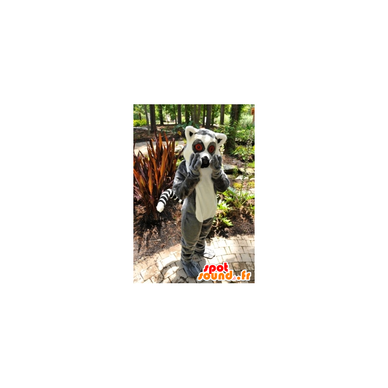 Mascot lemur, small gray and white monkey - MASFR20873 - Mascots monkey