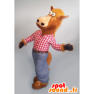 Brązowy koń maskotka z koszuli w kratę i dżinsy