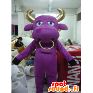 Mascot violeta e bezerro de ouro, touro