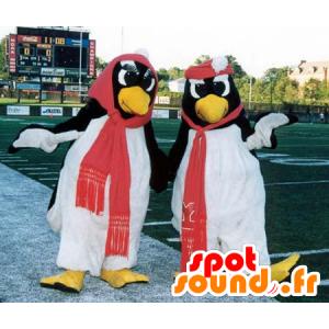 2 mascottes de pingouin, noirs et blancs