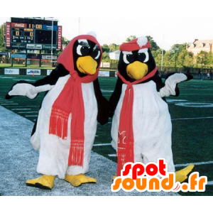 2 penguin mascots, black and white