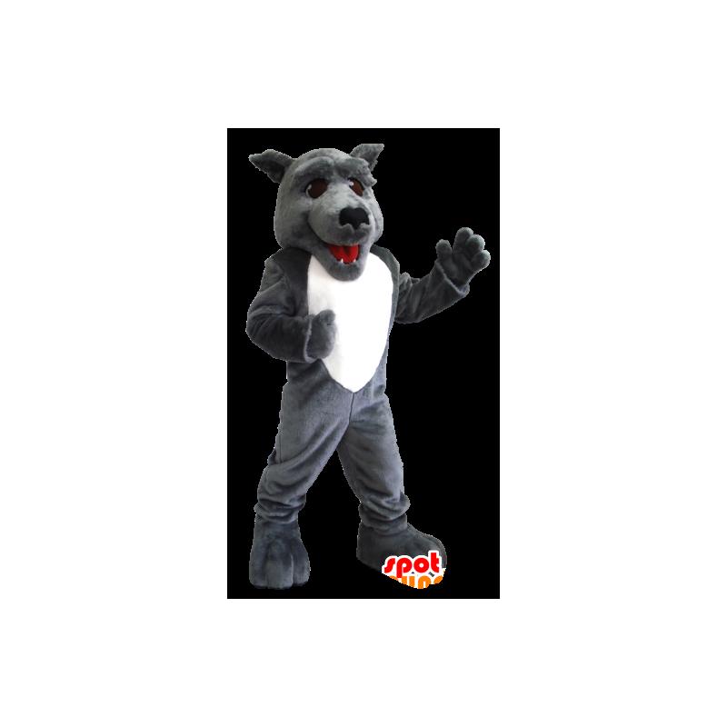 Grau und Weiß Wolf-Maskottchen - MASFR21219 - Maskottchen-Wolf