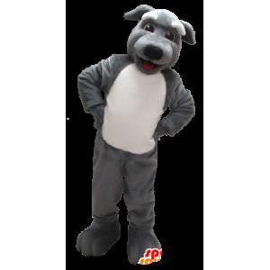 Szary i biały pies maskotka - MASFR21227 - dog Maskotki
