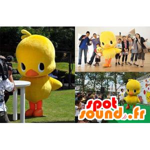 Mascotte gran polluelo amarillo y naranja, pato