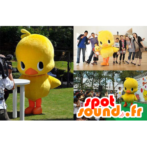 Mascotte large yellow and orange chick, duck