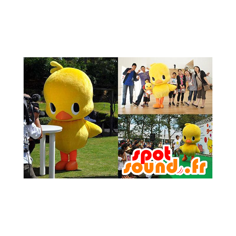 Mascotte large yellow and orange chick, duck - MASFR21321 - Ducks mascot