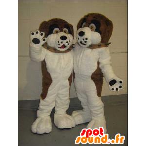 2 Haustiere braunen Hunden, schwarz und weiß - MASFR21438 - Hund-Maskottchen
