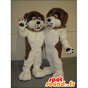 2 pets brown dogs, black and white - MASFR21438 - Dog mascots