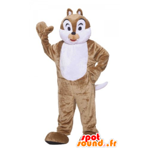 Mascot brown and white squirrel, Tic Tac or - MASFR21444 - Mascots squirrel