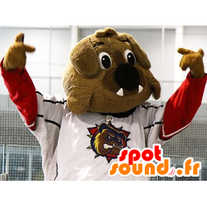 Brown bulldog mascot in sportswear