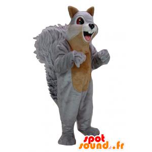 Maskotti harmaa ja ruskea orava, jättiläinen