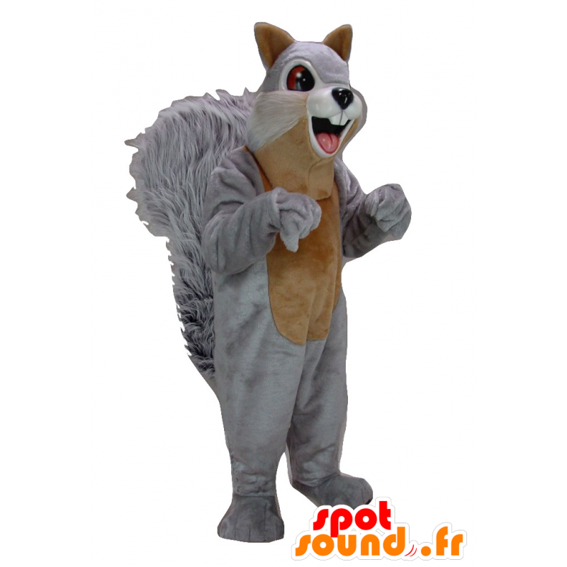 Mascot gray and brown squirrel, giant - MASFR21490 - Mascots squirrel