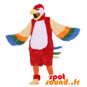 Wielobarwny papuga maskotka, gigant - MASFR21507 - ptaki Mascot