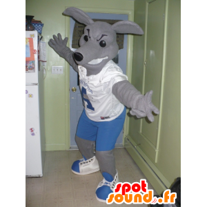 Gray kangaroo mascot in blue and white outfit