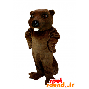 Brown beaver mascot, very realistic