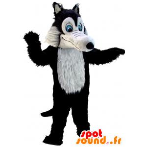 Mascot schwarzen und grauen Wolf, während haarig, blauäugigen - MASFR21970 - Maskottchen-Wolf