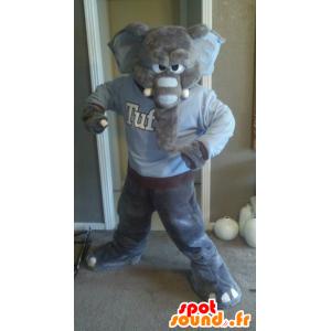 Mascota del elefante gris, mirar fiero