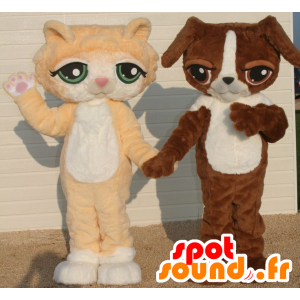2 animali, un arancio e bianco gatto e un cane bianco e marrone - MASFR22081 - Mascotte cane