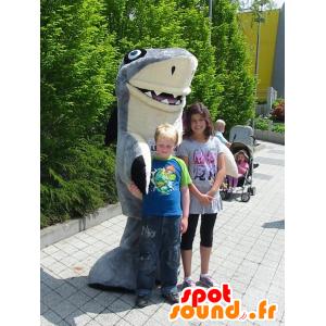 Mascotte de requin gris et blanc, géant et très réussi