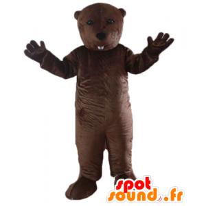 La mascota de la marmota, castor marrón, roedor