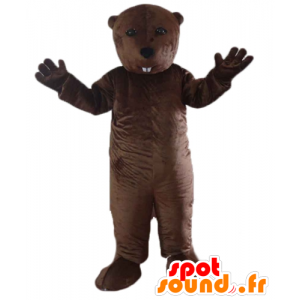 Mascot marmot, bruine bever, knaagdier