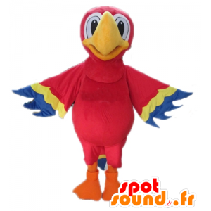 Mascotte pappagallo rosso, giallo e blu, gigante
