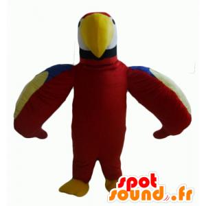 Mascotte de joli perroquet rouge, vert, bleu et jaune