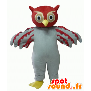 Mascot red and white owl, giant - MASFR22702 - Mascot of birds