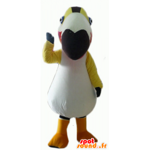 Mascot fargerik fugl, Toucan, papegøye