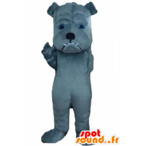 Grau Hund Maskottchen heftig zu schauen - MASFR22825 - Hund-Maskottchen