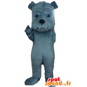 Szary pies maskotka wyglądać zacięta - MASFR22825 - dog Maskotki