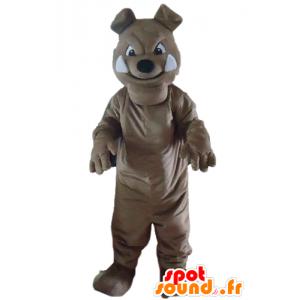 Grå hundemaskot, bulldog, ser hård ud - Spotsound maskot kostume