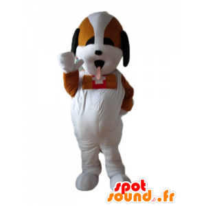 San Bernardo mascotte, cane soccorritore tricolore - MASFR22839 - Mascotte cane