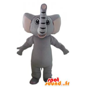 Mascotte elefante grigio, completamente personalizzabile