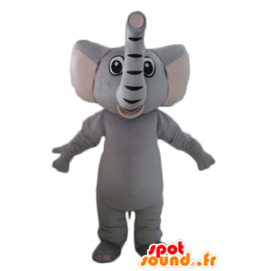 Maskotti harmaa elefantti, täysin muokattavissa