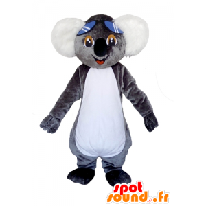Mascot gray and white koala, very cute with glasses