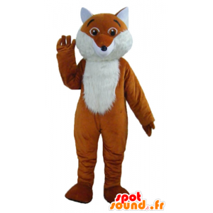 Mascot oranje en witte vos, leuk, harige