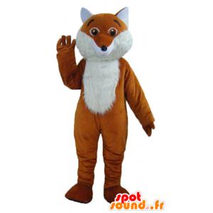 Mascotte de renard orange et blanc, mignon et poilu