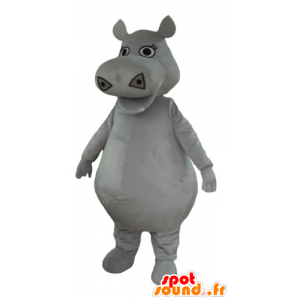 Mascot big gray hippopotamus, plump and cute