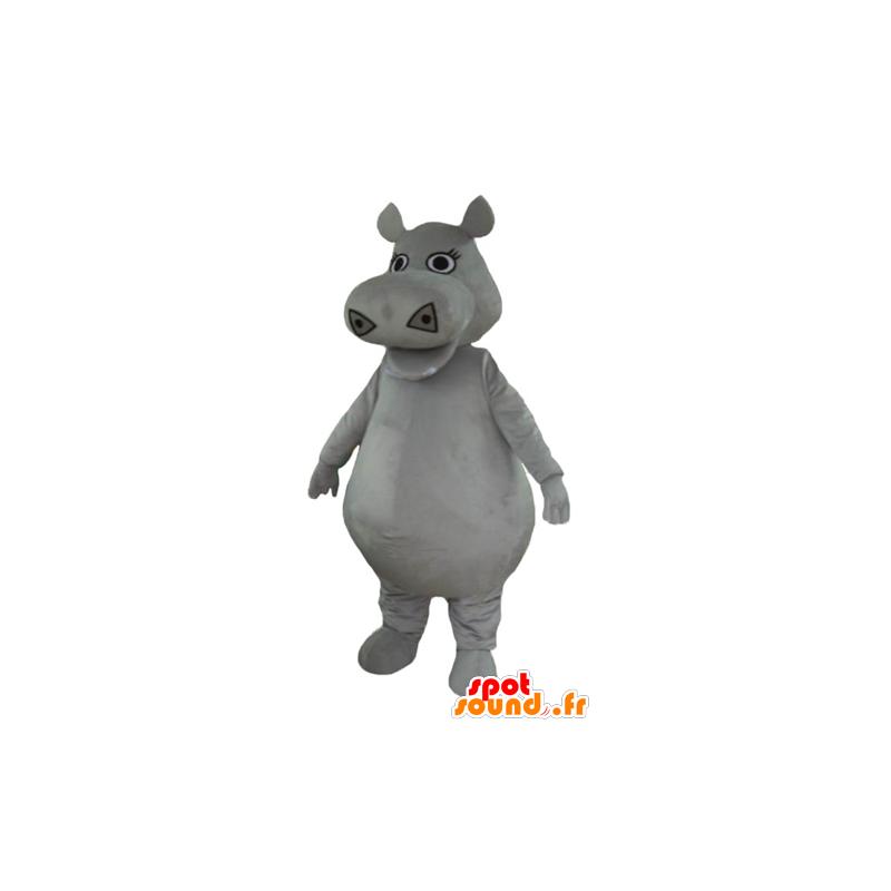 Mascot big gray hippopotamus, plump and cute - MASFR23005 - Mascots hippopotamus